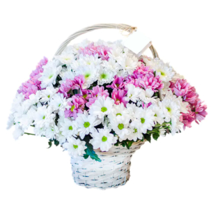 """Цветы в корзинке """"Малиновые сны"""""""