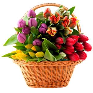 """Цветы в корзинке """"Микс тюльпанов"""""""